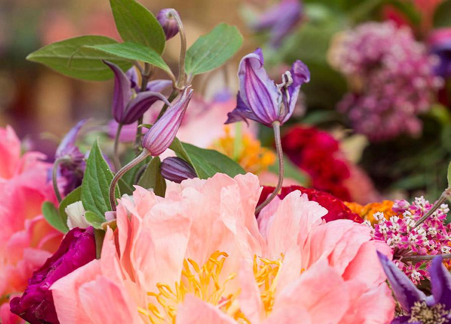 flores-en-la-casa-pilatos