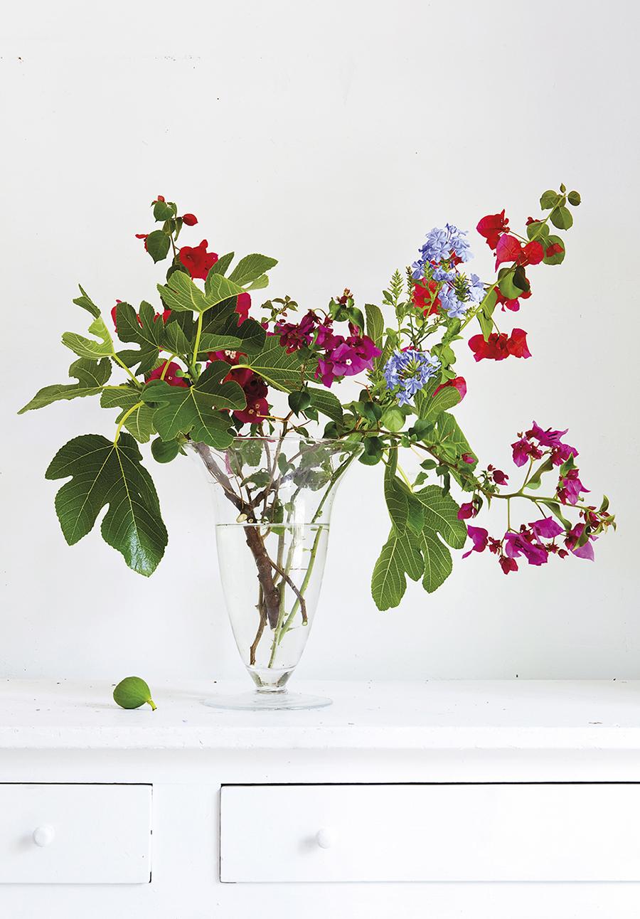 Para publicar la foto es necesario mencionar a la decoradora floral y paisajista Inés Urquijo