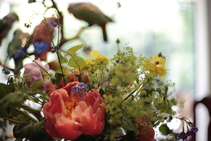 inesurquijo.pajaros y flores.11