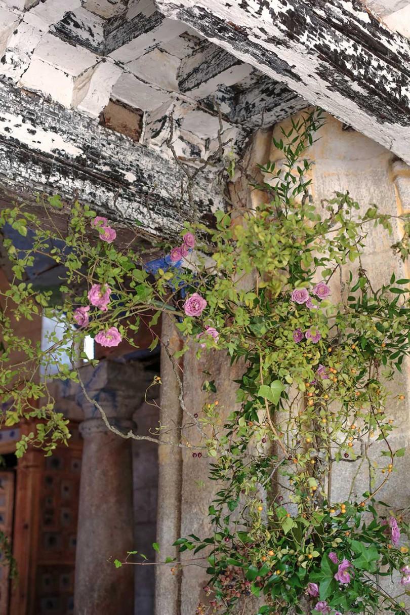 inesurquijo.flor.37